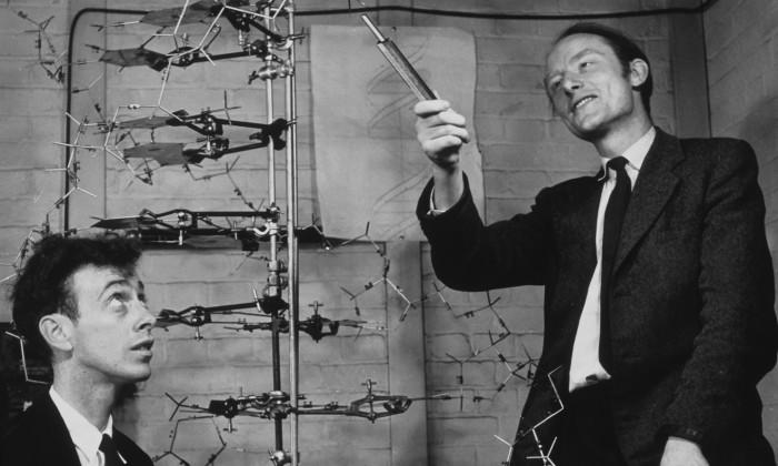 Watson-Crick.jpg