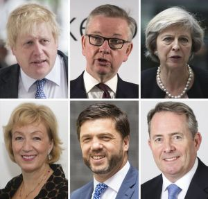 conservative leadership candidates 2016